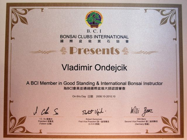 BCI Instructor